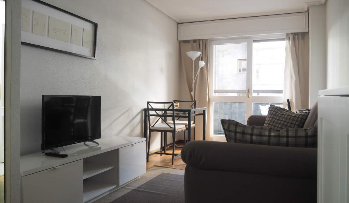 Alquiler de apartamentos madrid emasa for Alquiler apartamentos sevilla espana